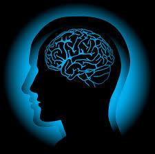 Brain vs. App